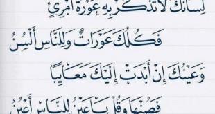 الإمام الشافعى