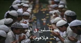 عدد المسلمين فى الهند
