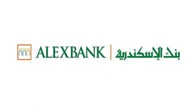 رقم خدمة عملاء بنك الاسكندرية