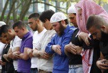عدد المسلمين في ألمانيا