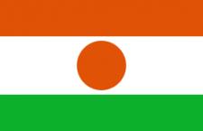 علم النيجر