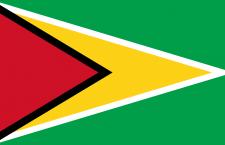 علم غيانا