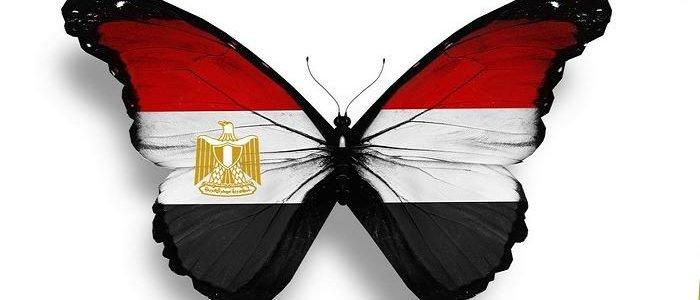 علم مصر 3