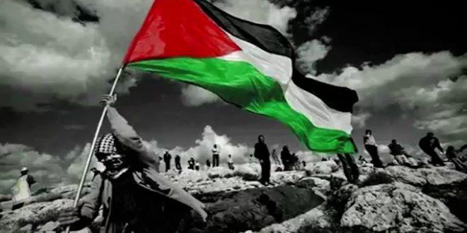 عدد سكان فلسطين